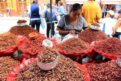 Market stall selling roasted grasshoppers