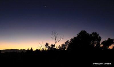 IMG_5415_-_Dawn.jpg