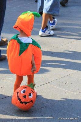 IMG_7662_-_Pumpkin.jpg