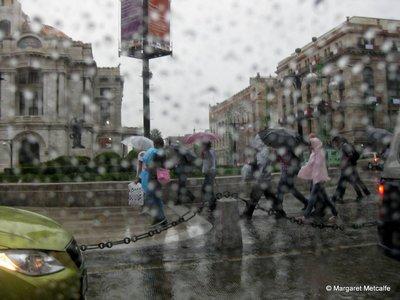 IMG_8682_-_Rain.jpg