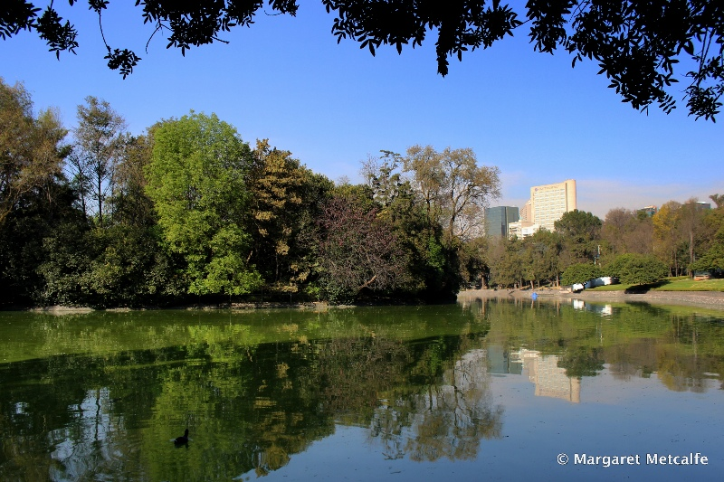 Lake in Chapultepec Park, Mexico City
