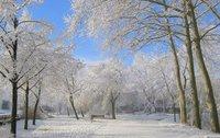 Snow in Olot