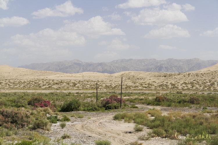Taklamakan Desert-1