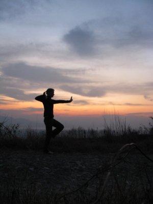 Kungfu_silhouet.jpg