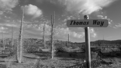 """Thomas Way"" I do believe this is my way..."