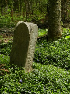 Forest Gravestones
