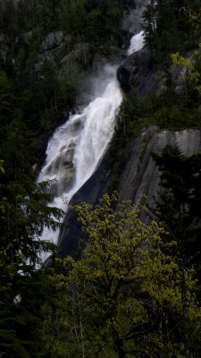 Shannon Falls