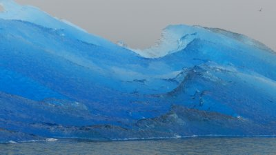 Ice Carvings in Blue