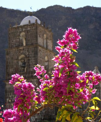 The mission and flowers