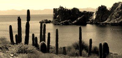 Elephante Rock, Isla Santa Catalina