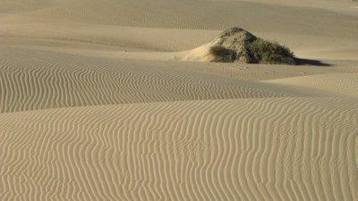 Sand Dune Detail