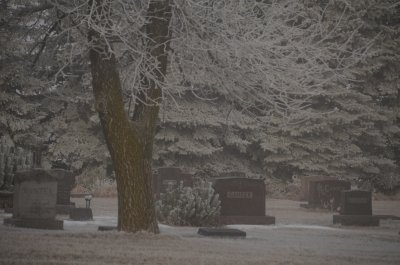 Cemetery in Frosted Mist