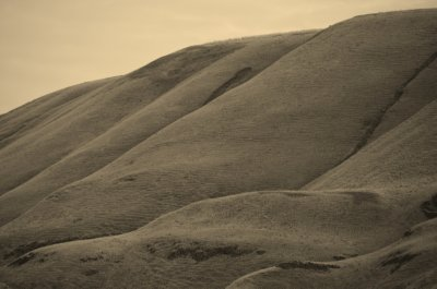 Wrinkles in the Landscape