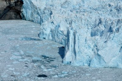 The Face of The LeConte Glacier