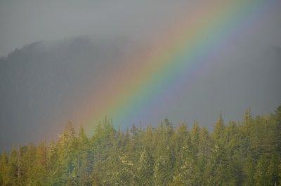 Rainbow Detail