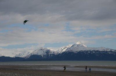 """Go Fly a Kite!"" in Homer, Alaska"
