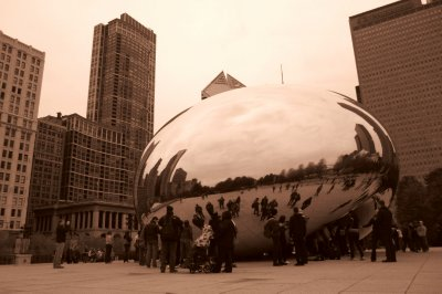 Everyone Loves The Bean