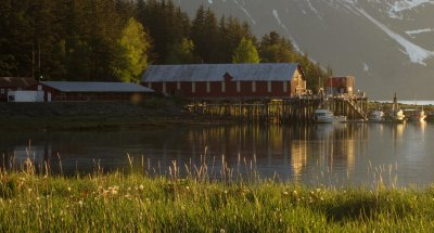 The Haines Cannery
