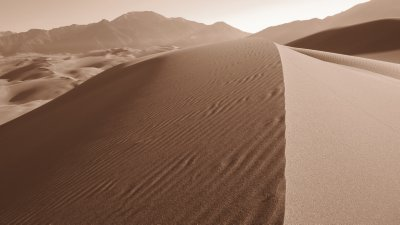 Dune Land