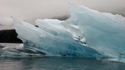Iceberg Detail