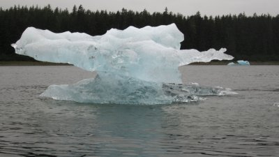 Delicate Ice Flow