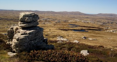 Rocky Landscape of East Falkland