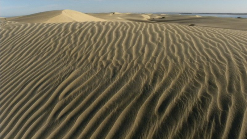 Sand Lines and Dunes