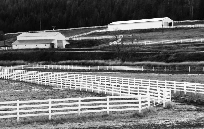 White Fences of an Idaho Horse Ranch