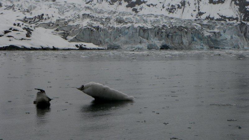 Dismal Glacier