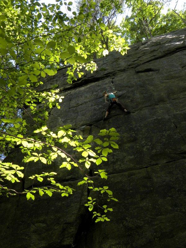 Sunlit Sport Climber