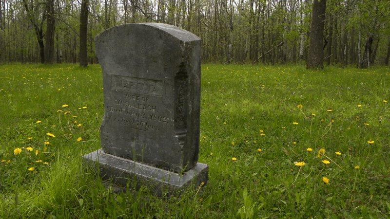 Old Cemetary Gravestones