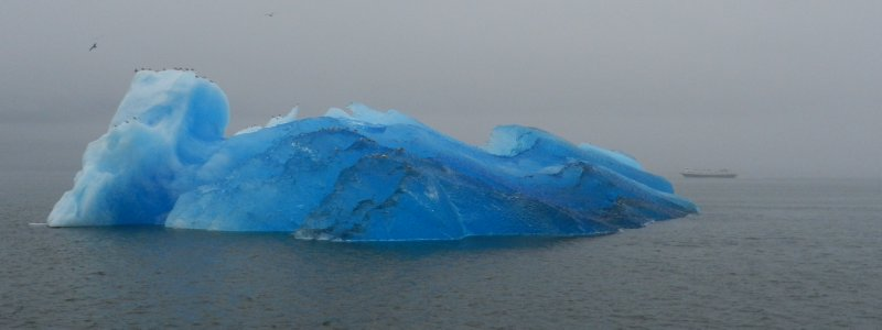 Iceberg and Cruise Liner