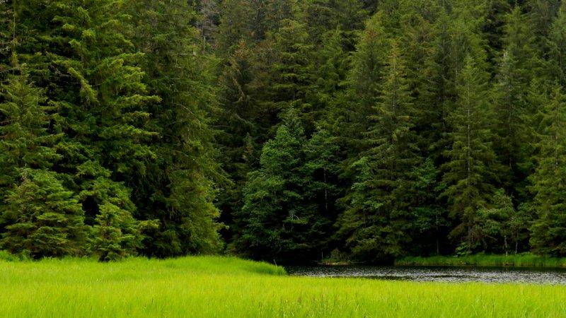 Pavlov Lake Grasslands
