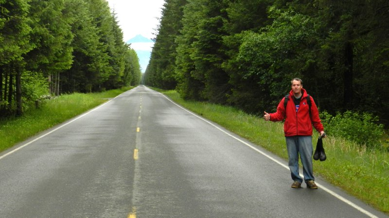 Hitching Through Alaskan Forests