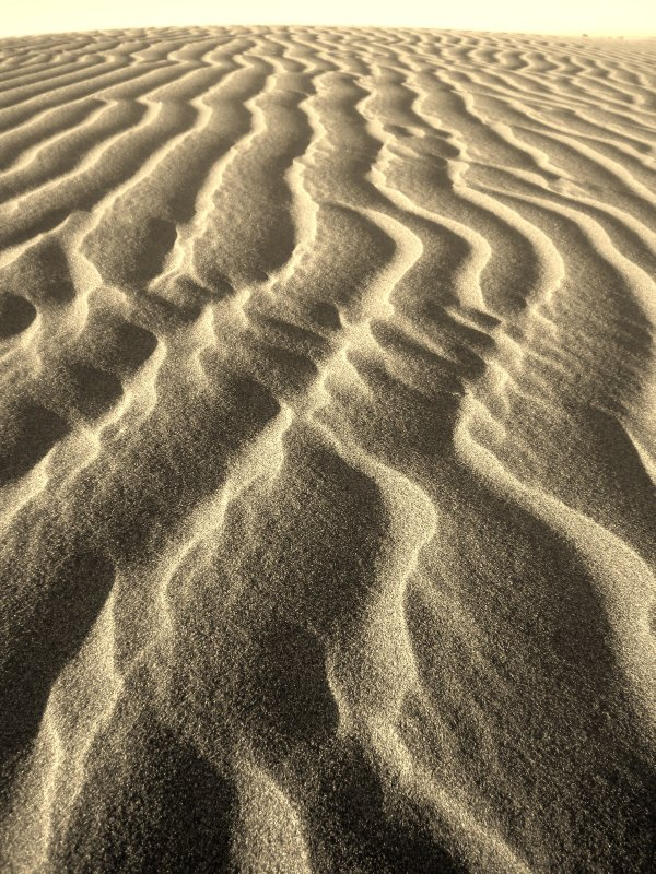 Sand Lines