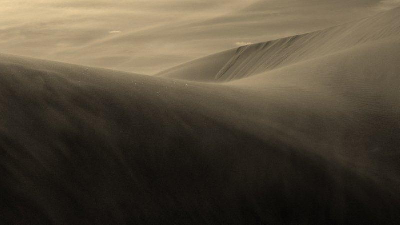 Dune Creation