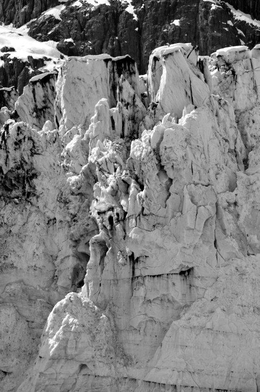 Marjorie Glacier Still Life