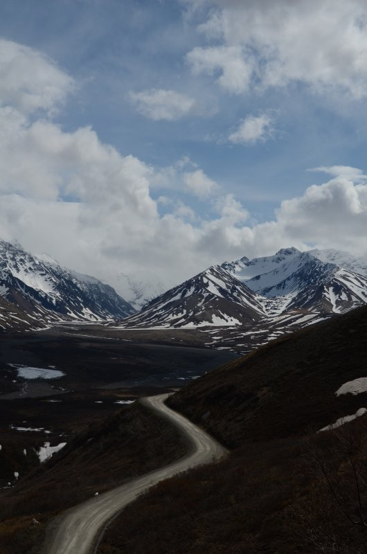 The Denali Park Road in Blue