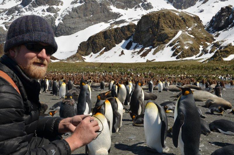 A Man Among His Penguins