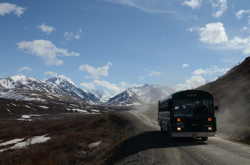 Denali Shuttle Bus