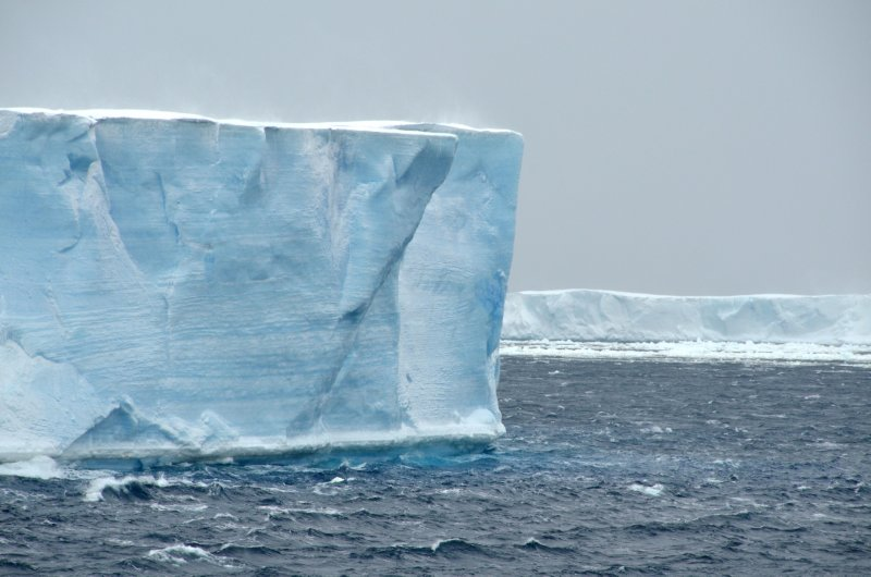 Icebergs in Antarctic Sound