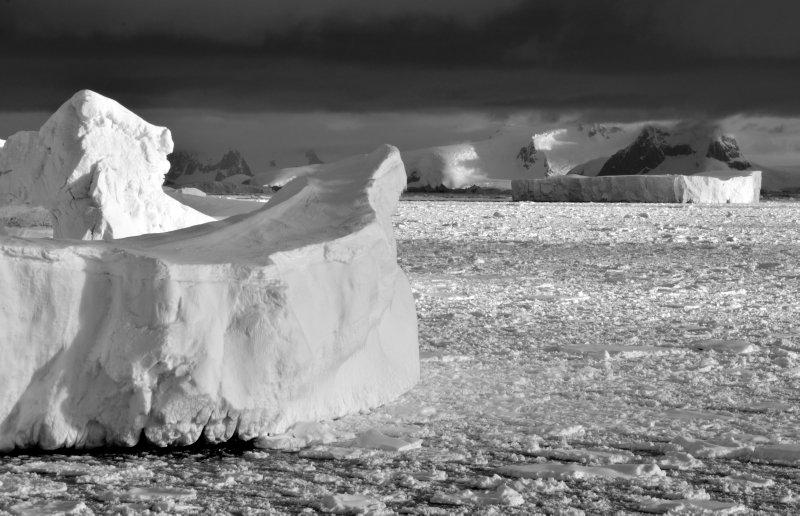Icebergs in Pack Ice