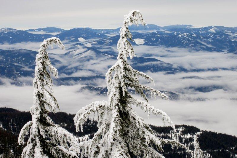 Northern Idaho Landscape