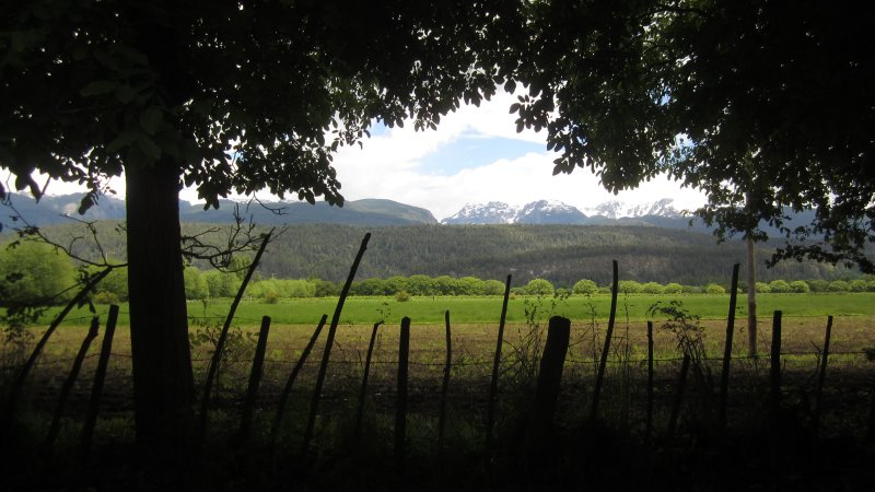 El Bolson Farm