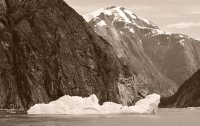 Tracy Arm Iceberg