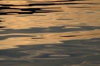 Flat Water at Dawn