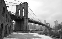 The Brooklyn Bridge From The Park