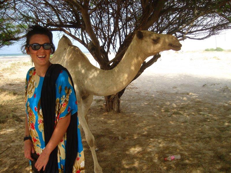 Ah Camels