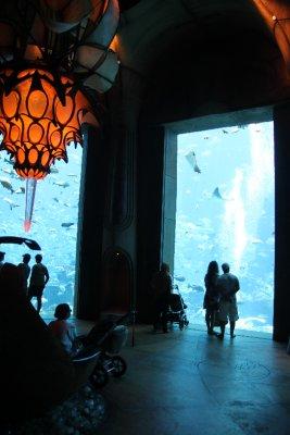 Aquario dentro de Atlantis (centro turistico) en la palmera (isla artificial de Dubai)