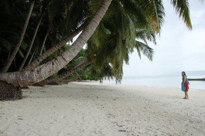 paradise this way